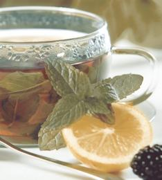 Dec Tea Panno (панно из 2-х шт) КПН16Tea 50х45