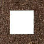 EVOLUTION BROWN FORO 10 10x10