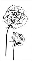 Decor Blancos Roses blanco 30 x 60