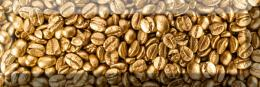 Decof Coffee Beans 2 10*30