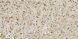 Керамогранит ATLAS CONCORDE MARVEL GEMS Terrazzo Mix Warm Lapp 30х60