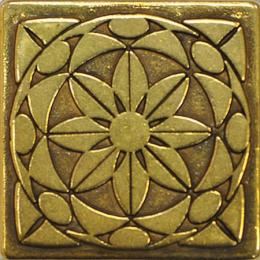 Diaman Shined Brass 5x5