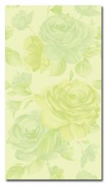 QUEEN ROSE VERDE PRATO 25*45