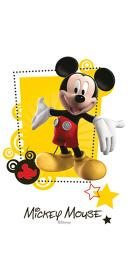 Mickey Friends R3060 30x60