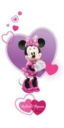 Minnie Friends R3060 30x60