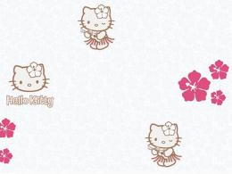 Hello-Kitty-Hawaii....