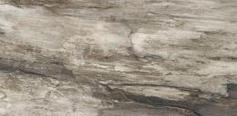 Petrified Tree Grey Bark 45*90 Naturale rett.