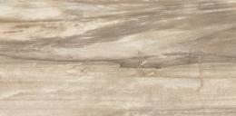 Petrified Tree White Tiger Core 30*60 Naturale rett.