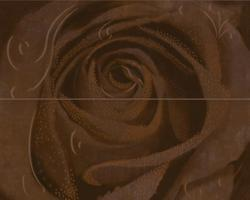 Decor Rosa 2 Chokolate 40x50